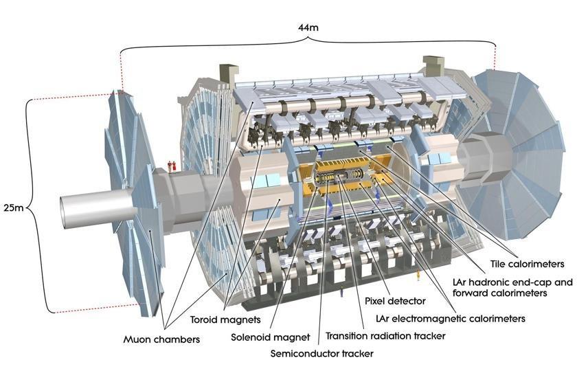 Schemat budowy detektora ATLAS