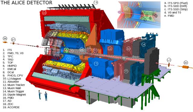 Schemat eksperymentu ALICE w roku 2009. Sylwetki ludzi dają wyobrażenie o wielkości urządzenia.